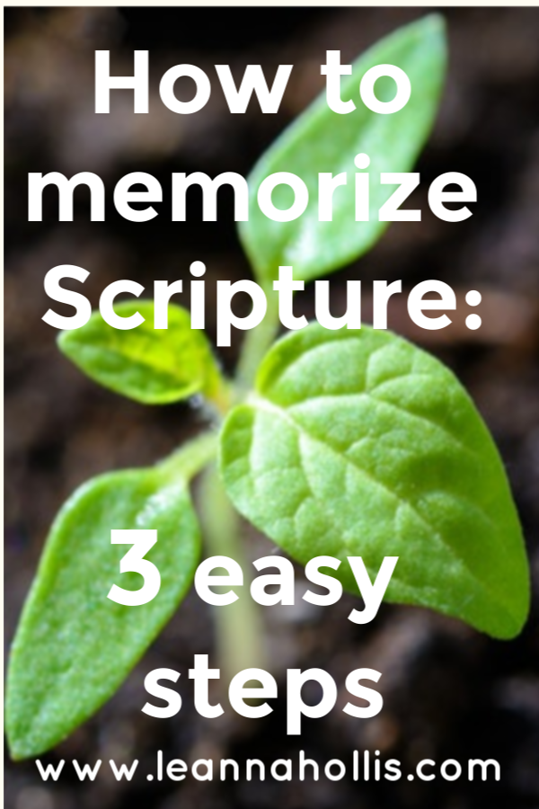 How to Memorize Scripture